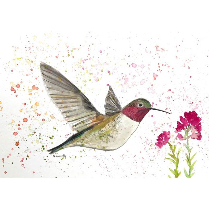 Hummingbird and the pink flowers