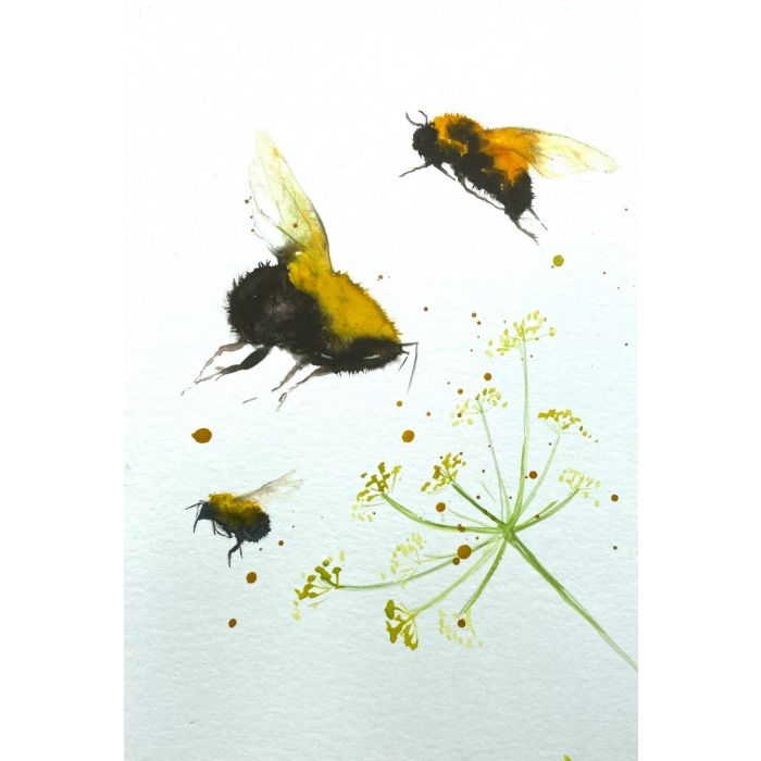 Bees & Fennel