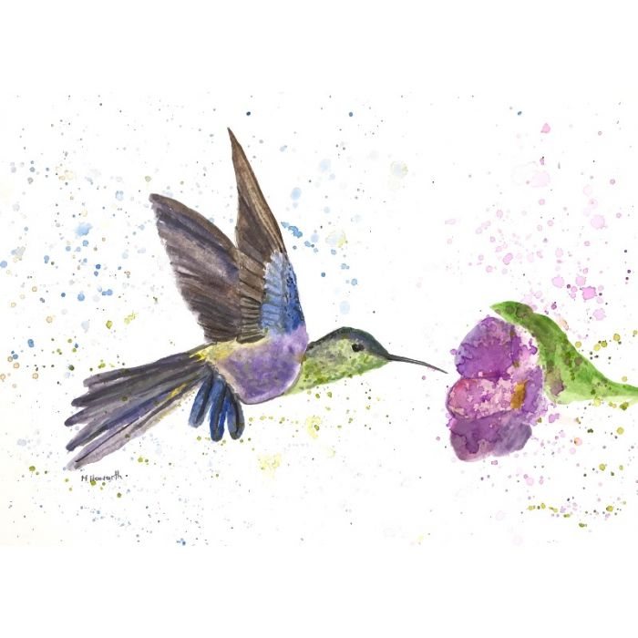 Hummingbird and purple flowers watercolour