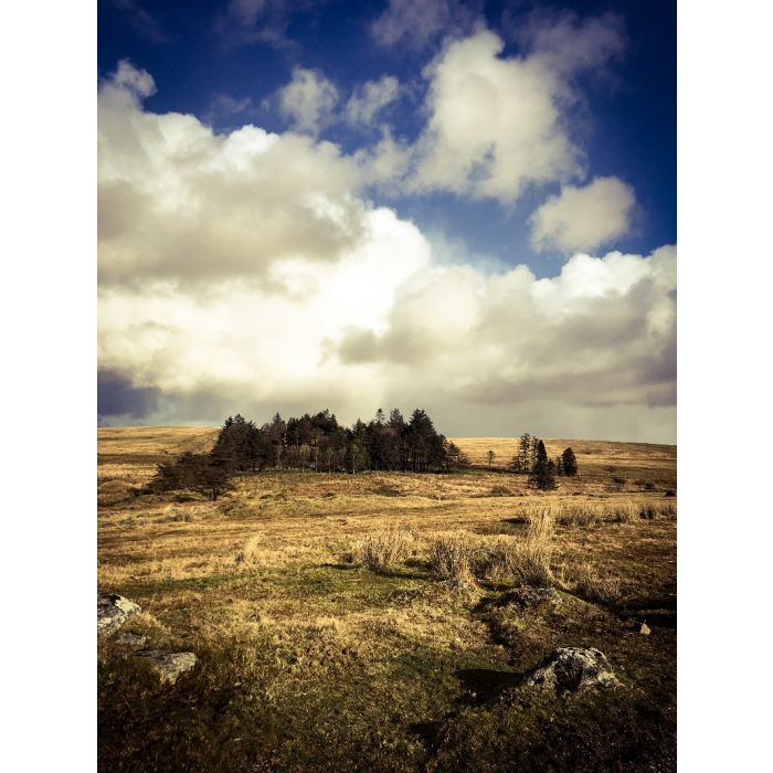 Sheepstor, Dartmoor 03 - Limited edition photograph
