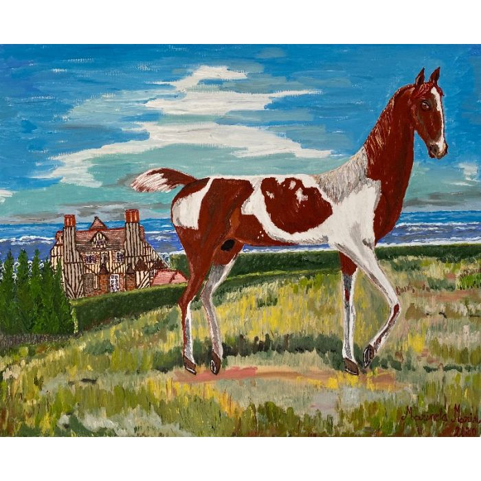 Wild mustang , pinto horse in a landscape at Deauville, Normandy