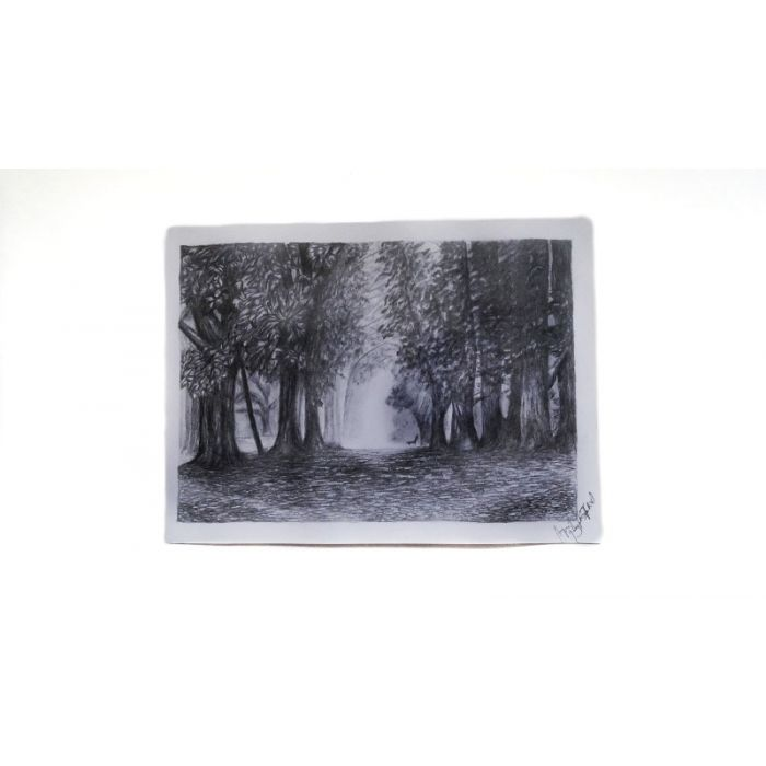 Forest Art Sketch 21.0 x 29.7cm