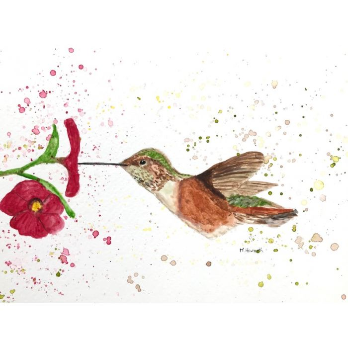 Hummingbird and flowers watercolour