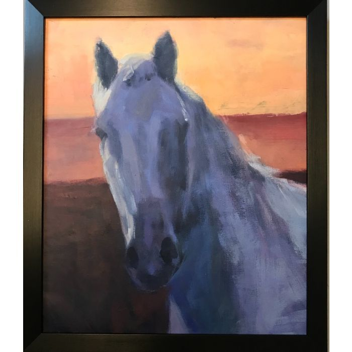 The white horse ( framed original oil painting)