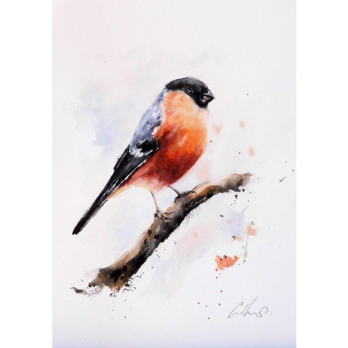 A Goldfinch, Original watercolour painting.