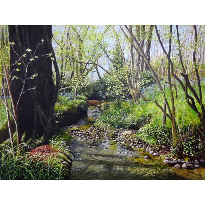 Down by the Bluebell Stream