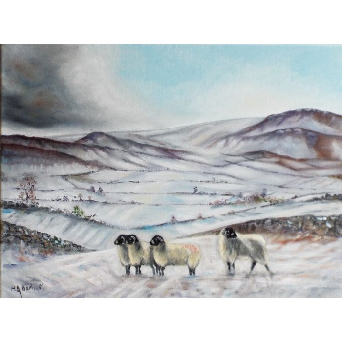 The Dales-Winter