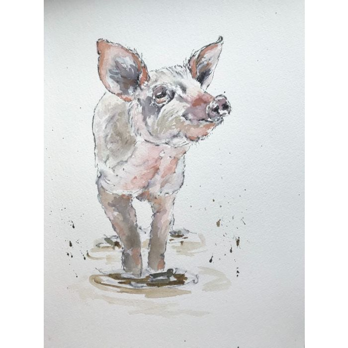 Pig in a puddle
