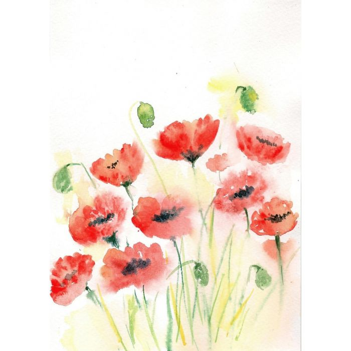 Red Poppies Watercolor painting on paper