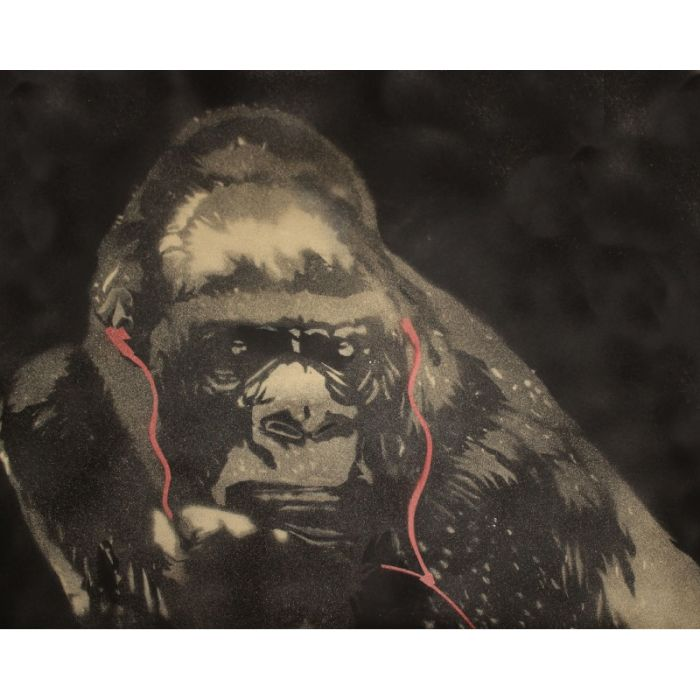 Gorilla in the groove (on chunky canvas).