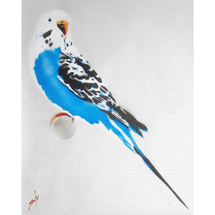 Grandma's Budgie + free poem (on chunky canvas)