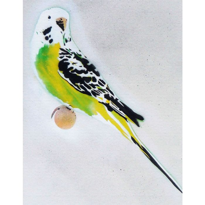 Grandma's Other Budgie (on chunky canvas) + Free Poem