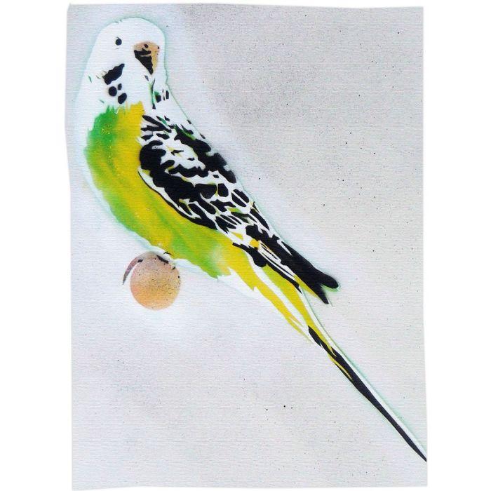Grandma's Other Budgie (On Gorgeous Water Colour Paper) + Free Poem