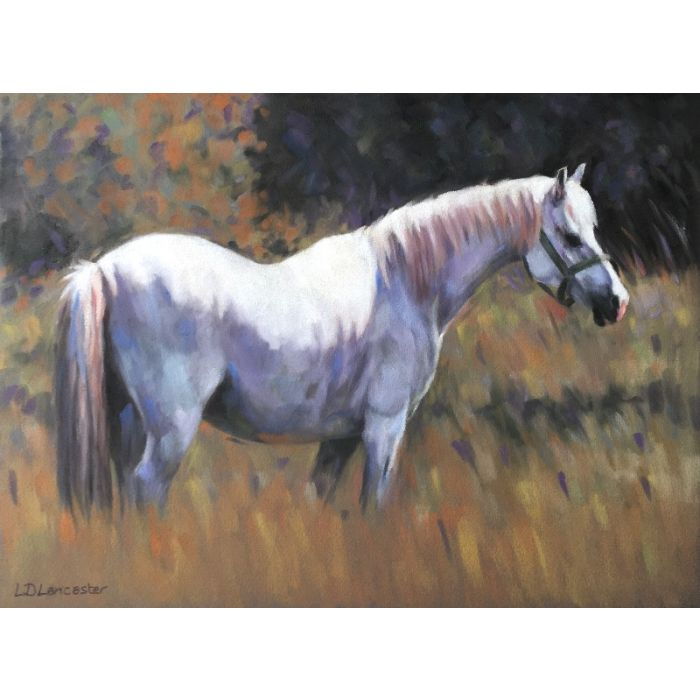 Grey pony in field pastel painting
