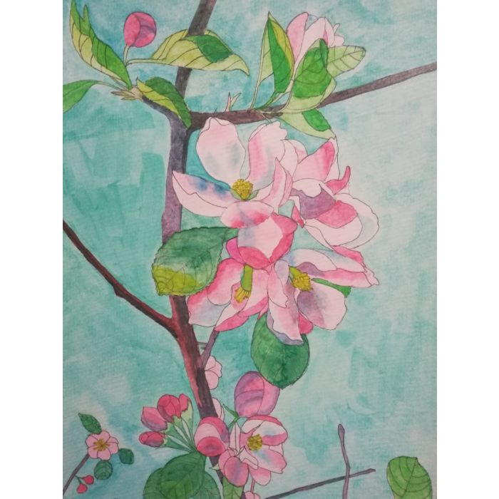 Pink apple blossom watercolour painting against a blue sky