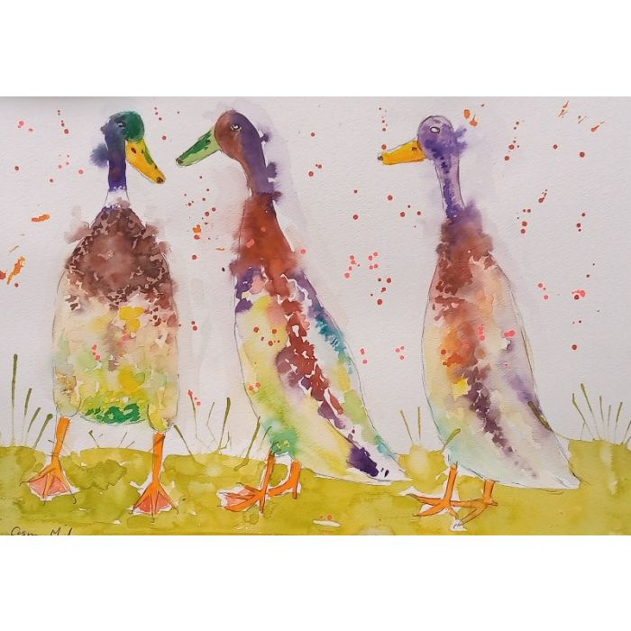 Three Runner Ducks