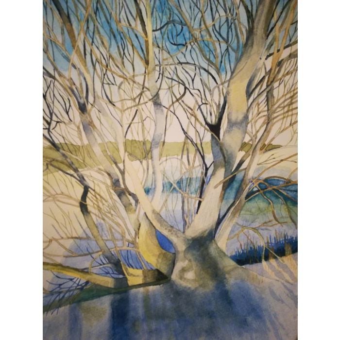 Snowy field with tree in watercolour