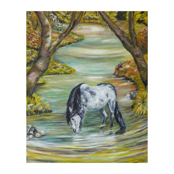 Dappled Horse In Stream