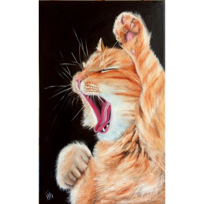 Sweet yawn. Portrait of a ginger Cat
