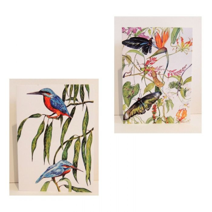 Two x 2 Kingfisher & Butterfly Greeting Cards