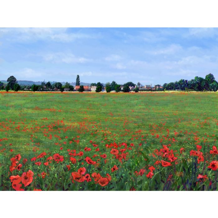 Poppies Haxey North Lincolnshire
