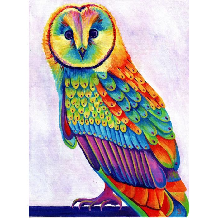 Olive the Rainbow Owl