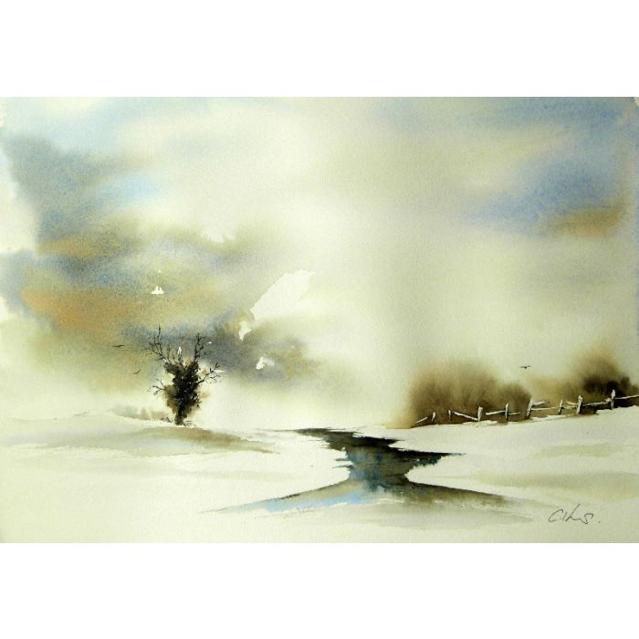 Roost. Original watercolour painting.