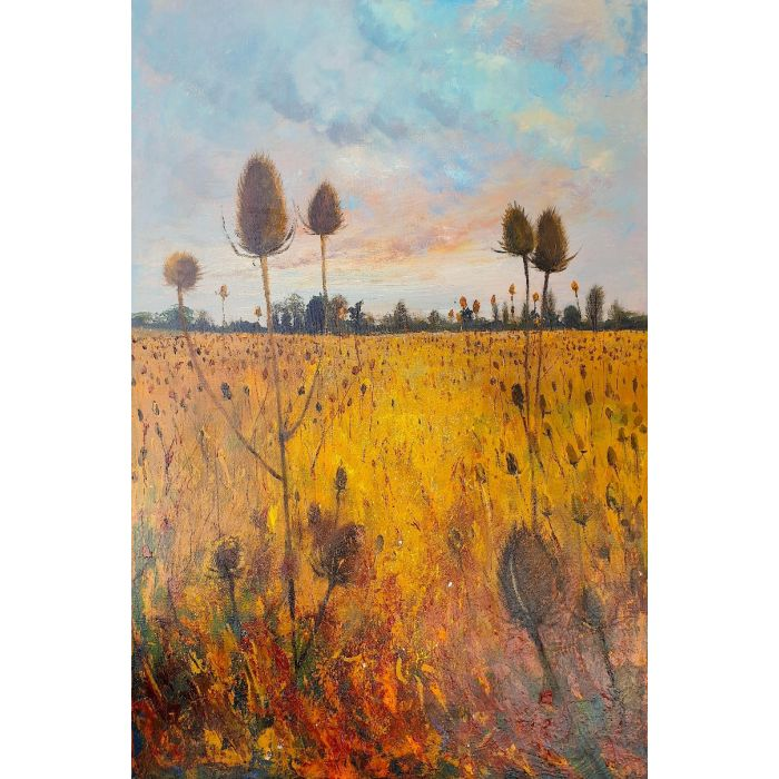 Late Summer Field of Teasels