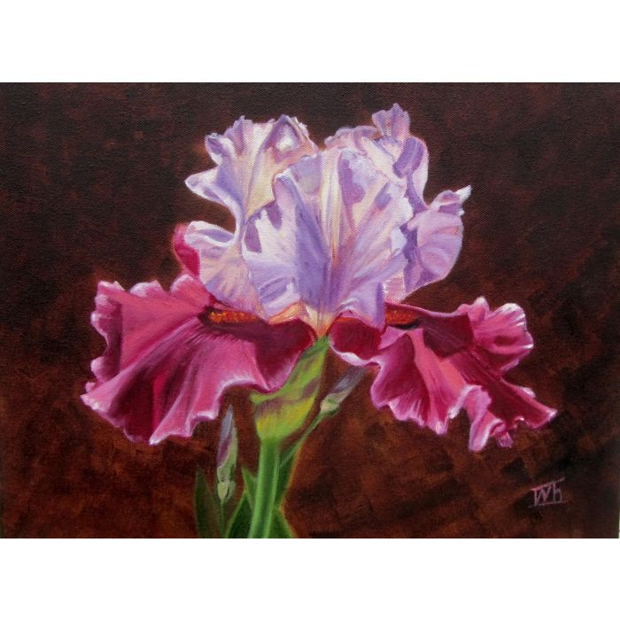 PURPLE IRIS. FLOWERS. STILL LIFE