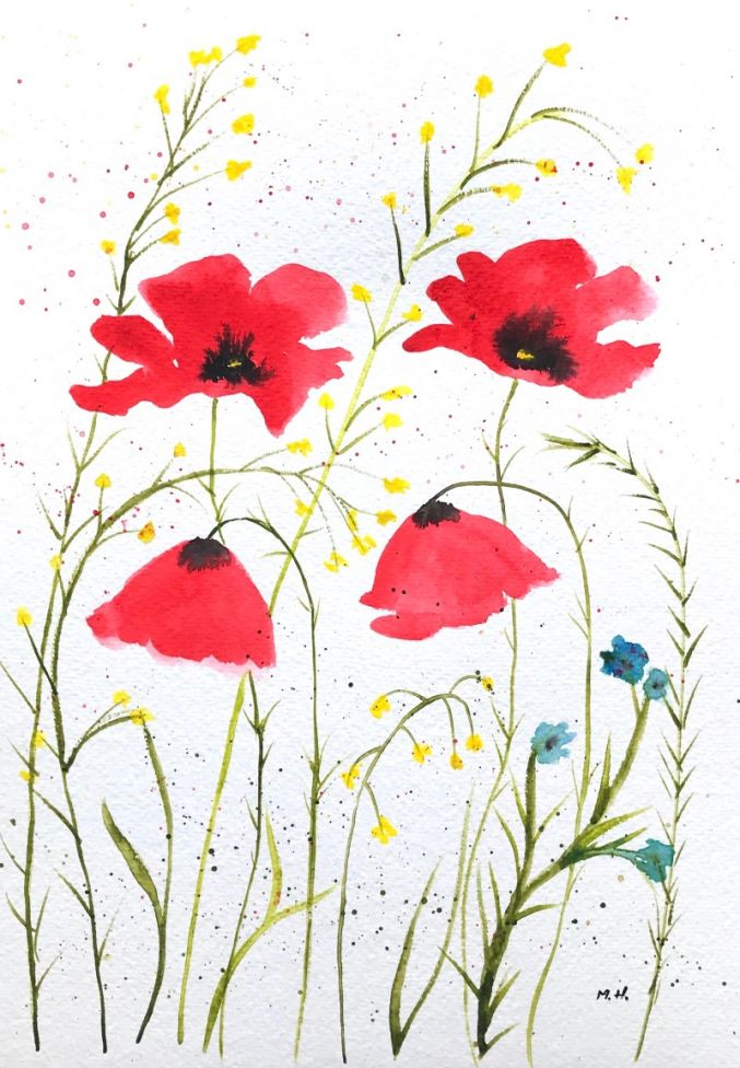 Red poppies nr 4