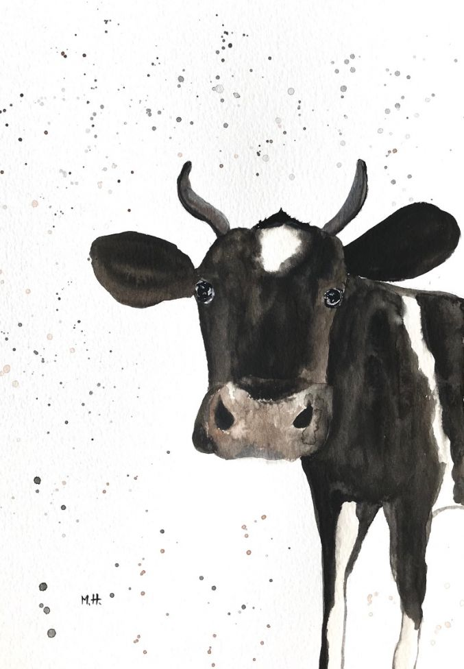 Black and white cow A4