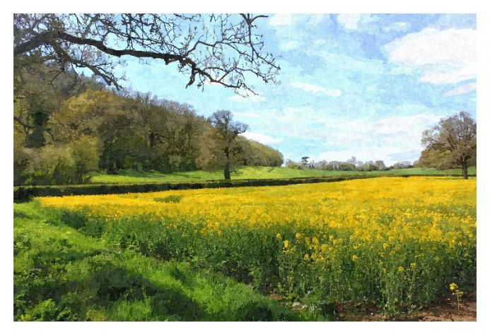 Spring Into Yellow