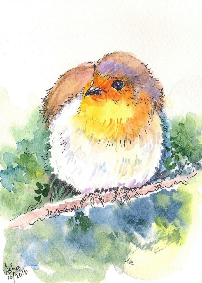 Cute Bird Watercolour painting on paper