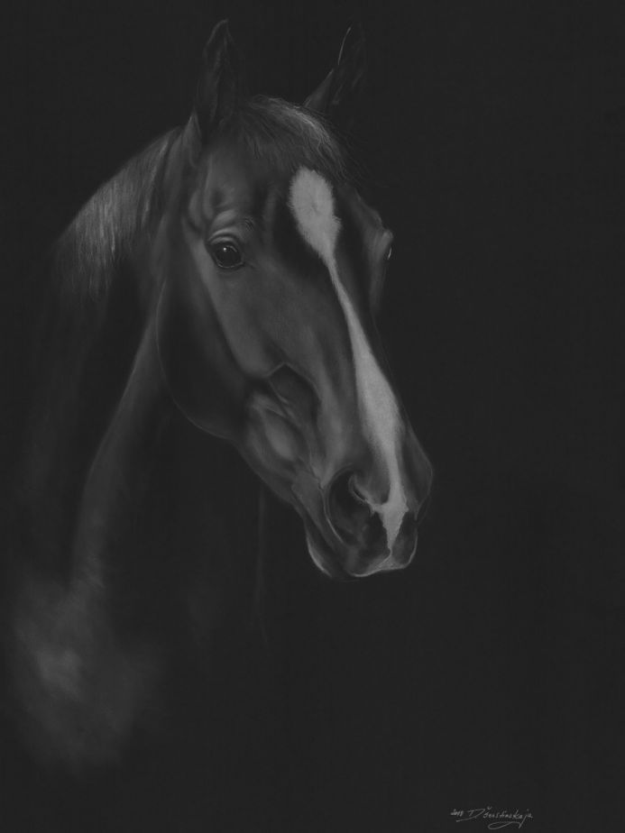Charm (Limited Edition Giclee Print)