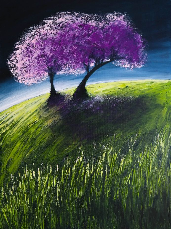 Cherry blossom - Fields and Colors Series