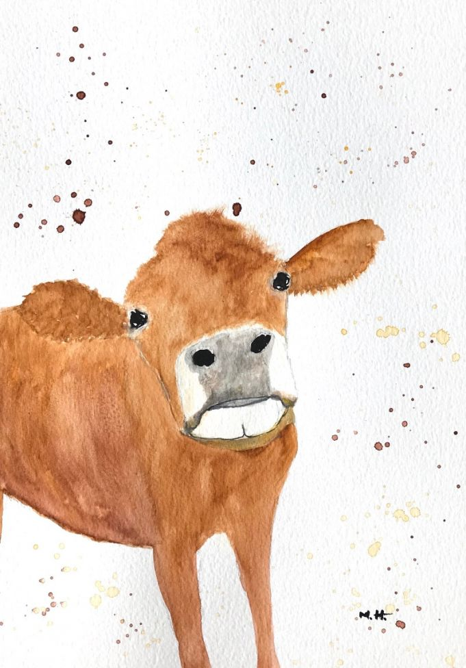 Brown cow A4