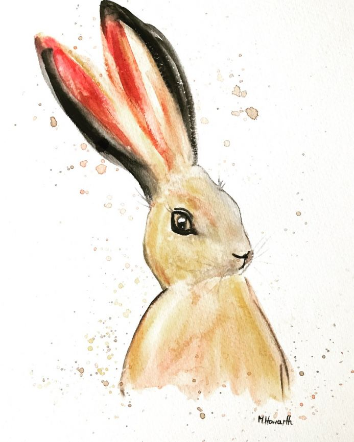 Brown hare nr 8