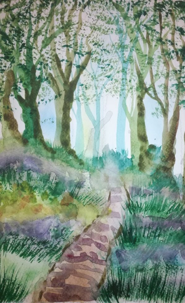 Bluebells and muddy path in the woods