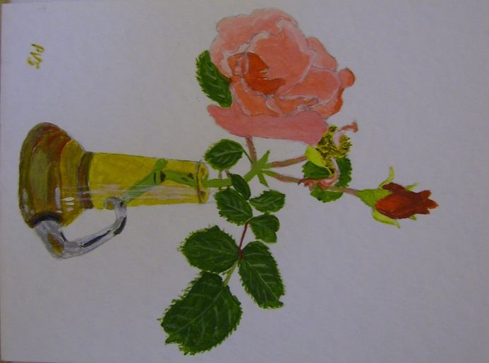 Rose in a glass vase