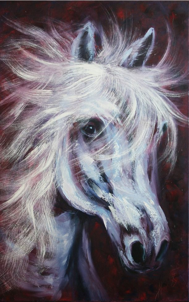 A INSTANT... A PORTRAIT OF A HORSE