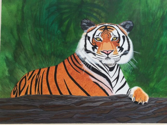 BENGAL TIGER    Limited Edition of 70 Giclee Prints - signed and numbered by the Artist. Size A3  297 x 420 mm. Other sizes are available.
