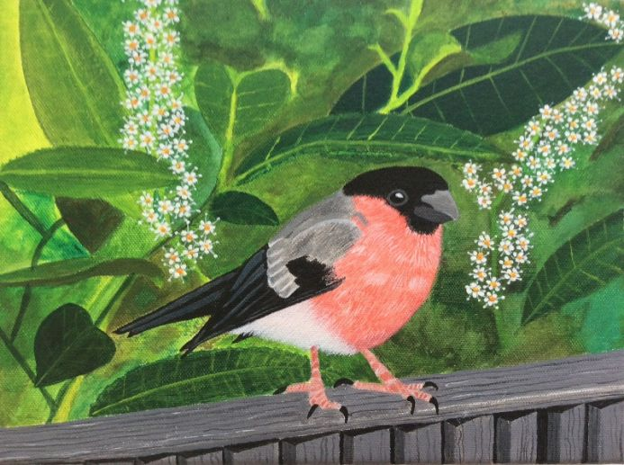 Bullfinch and Laurel - Limited Edition of 70 Giclee  Prints.  Signed and numbered by the Artist