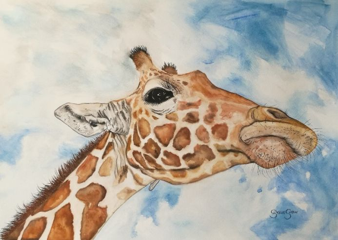 Up Above. Giraffe Watercolour Painting on Paper. 59.4cm x 42cm. Free Worldwide Shipping.