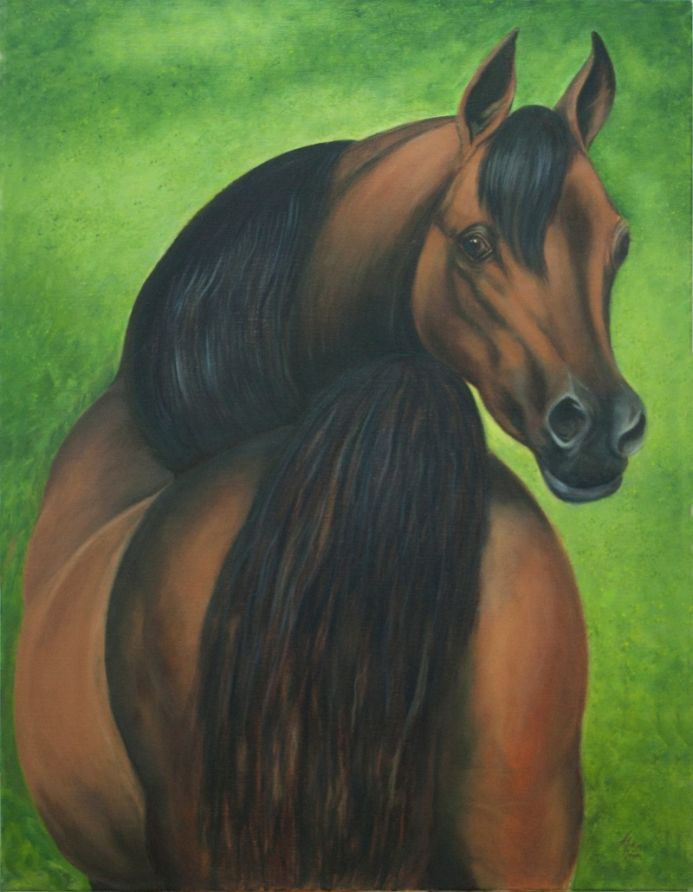 Arabian Horse, Oil painting on linen canvas