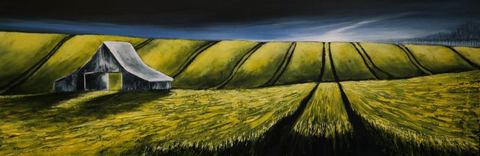 BARN IN THE CANOLA FIELDS - FIELDS AND COLORS SERIES