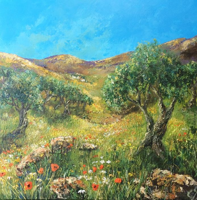 Olive Grove in Springtime