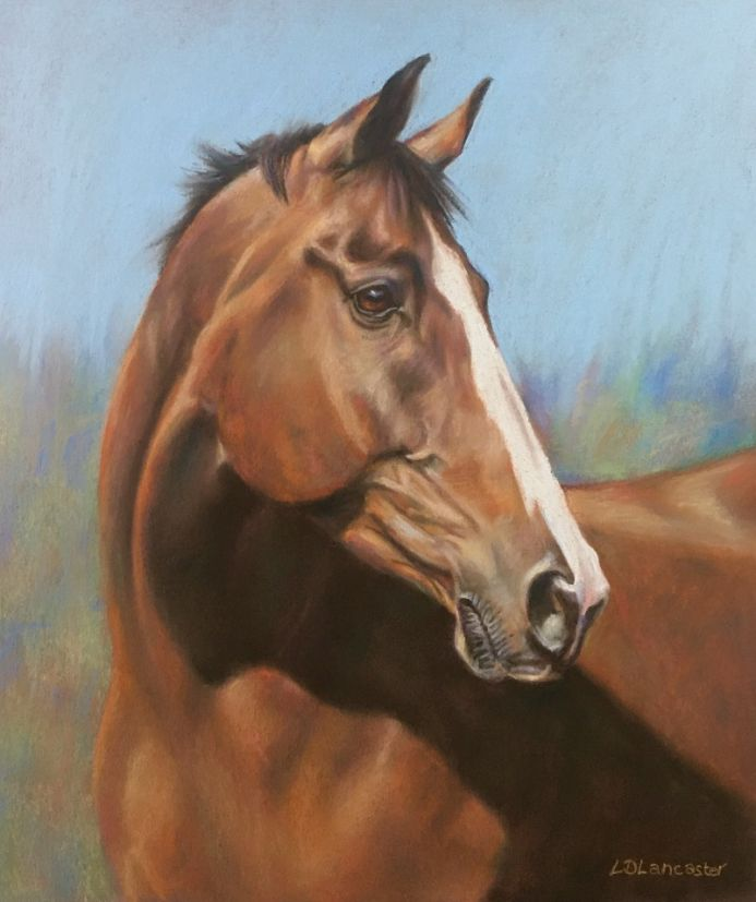 bay horse pastel painting