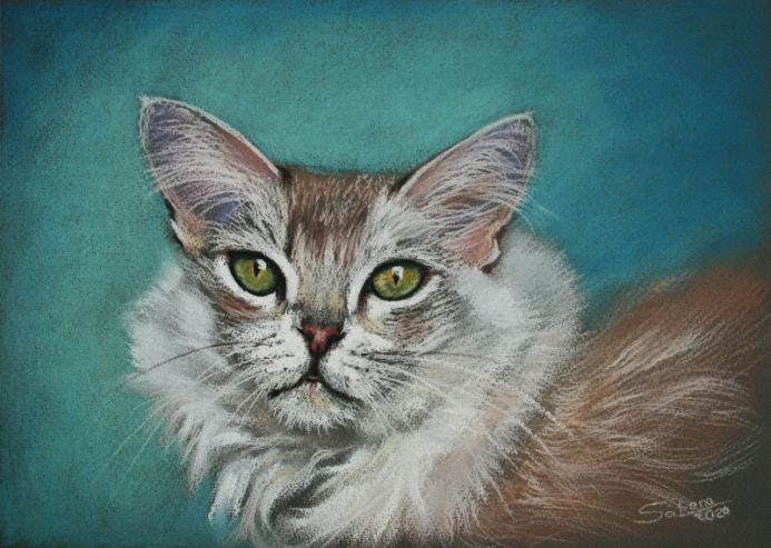 Portrait of Cat I / Animal
