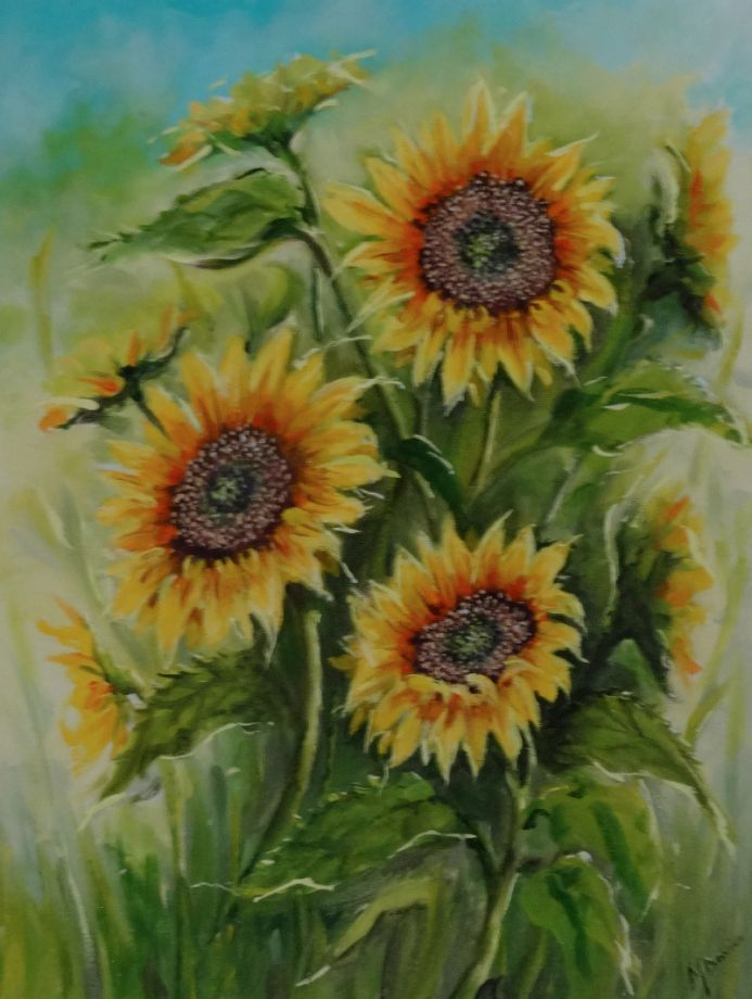 A Sunflower Day