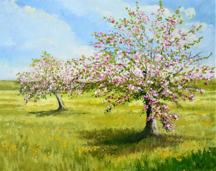 The Forgotten Orchard
